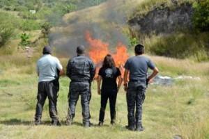 Destruccion_narcoticos_gto_4
